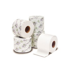 EcoSoft Toilet Tissue 2 Ply   All-Greenjanitorialproducts.com